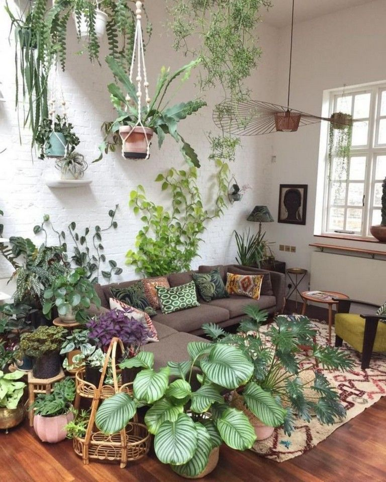 Plants Inside Rooms: 37+ Amazing Indoor Plants Decor Ideas For Your Apartment