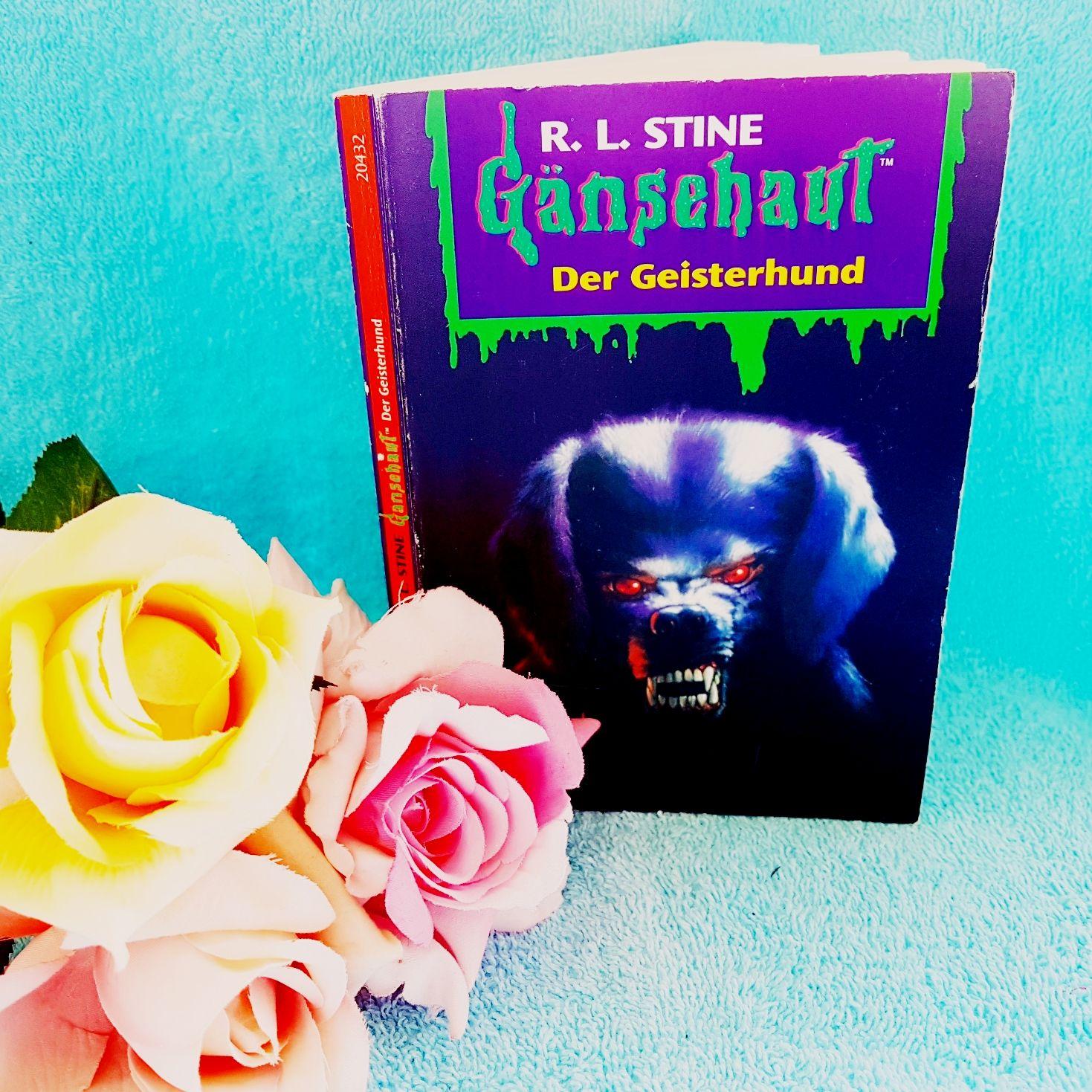 Gänsehaut - Der Geisterhund von R.L.Stine
