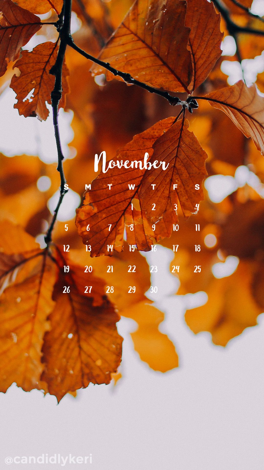 Golden changing fall leaves November calendar 2017