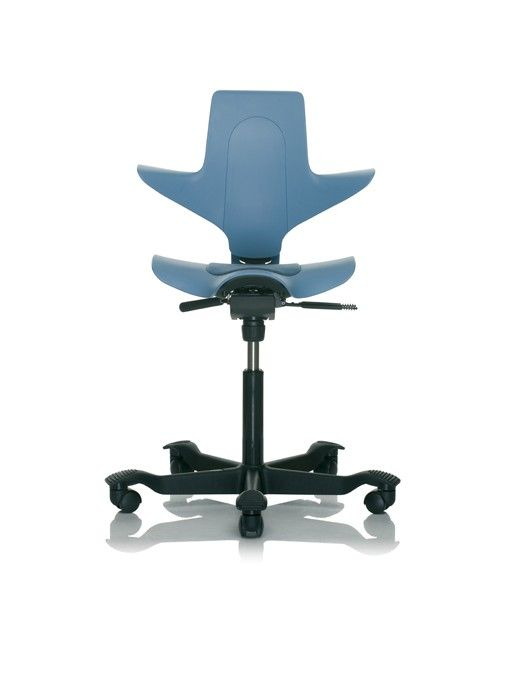 The Hag Capisco Puls Chair System Furniture Cool Chairs Office Seating