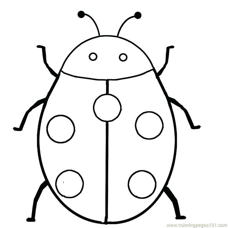 Cute Ladybug Coloring Pages Ideas Ladybug Coloring Page Insect Coloring Pages Bug Coloring Pages