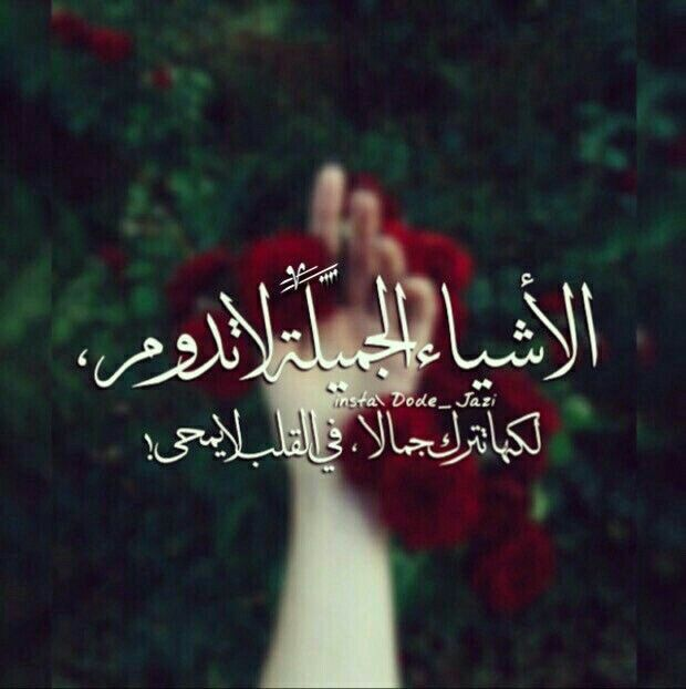 Discover And Share The Most Beautiful Images From Around The World Iphone Wallpaper Quotes Love Love Quotes Wallpaper Arabic Quotes