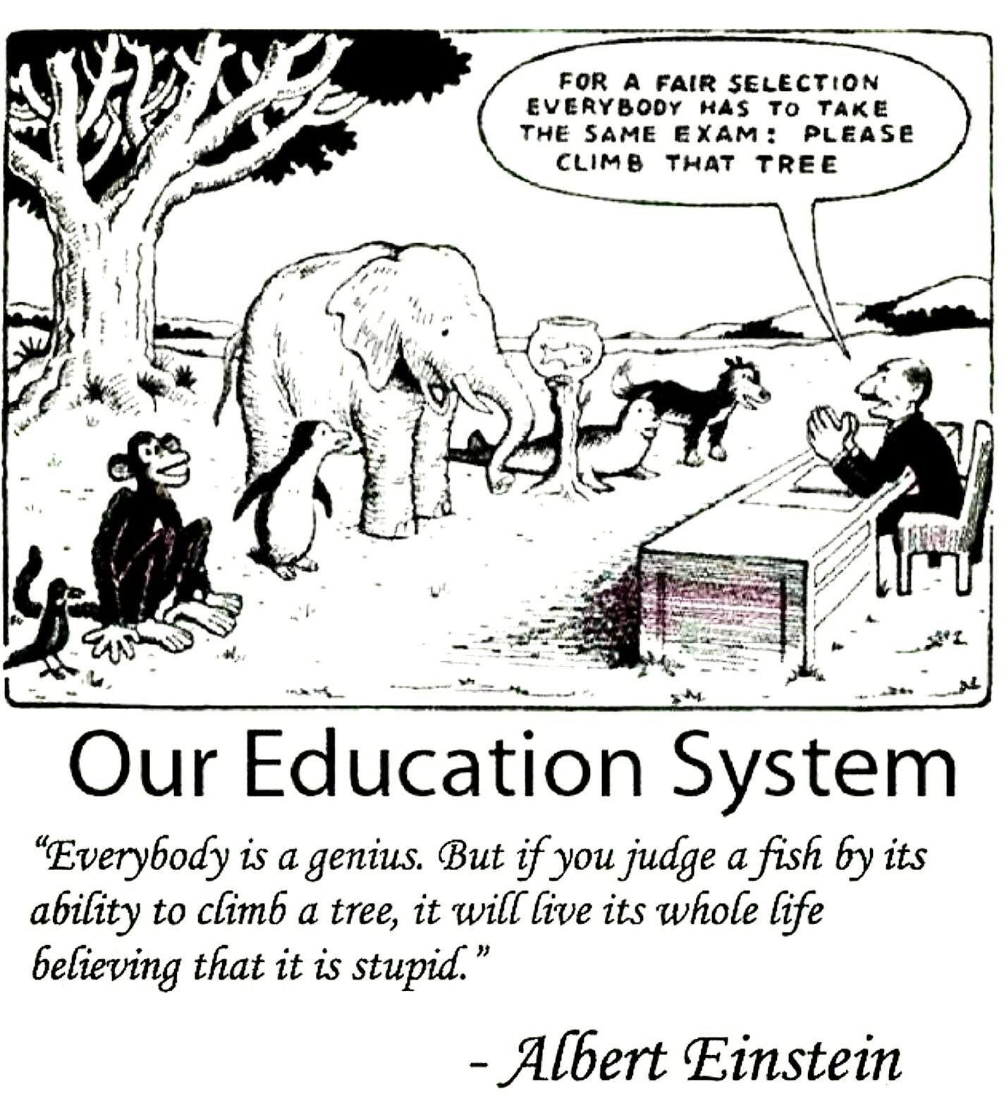 Pin By Dani Wilson On Where I Stand Einstein Quotes Education