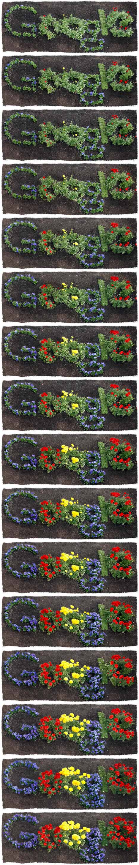 Google's Home Grown Earth Day Logo