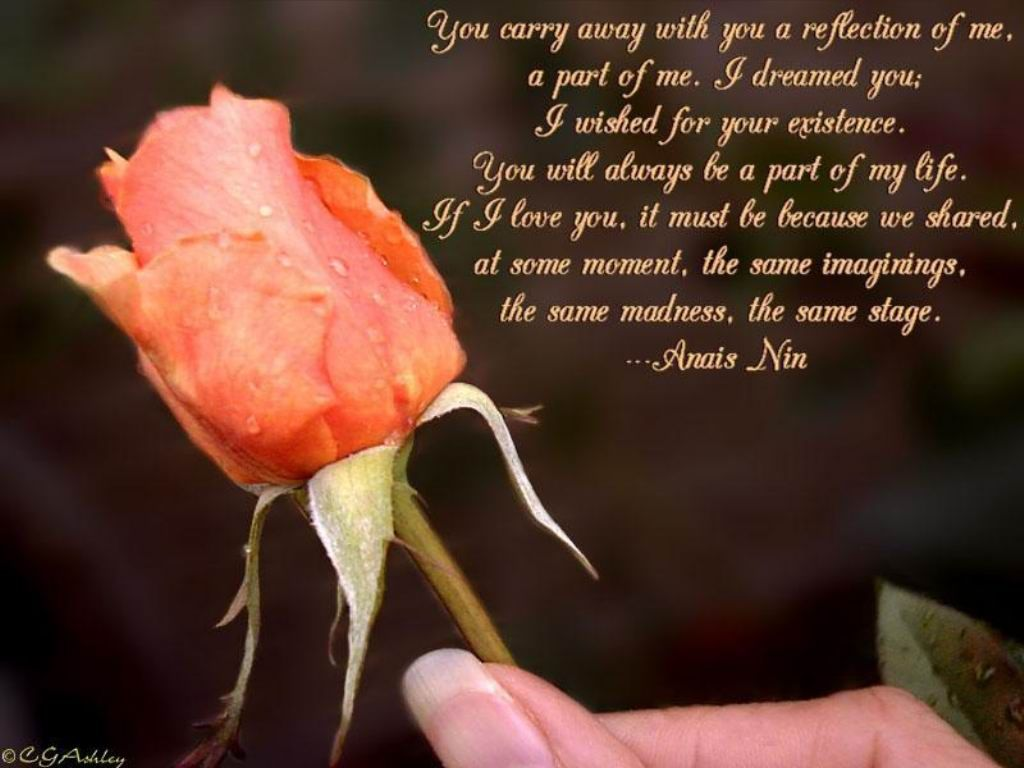 Genial Love Quotes Messages Sanjay Love Flowers Quotes Love Flowers Greetings Love  Flowers