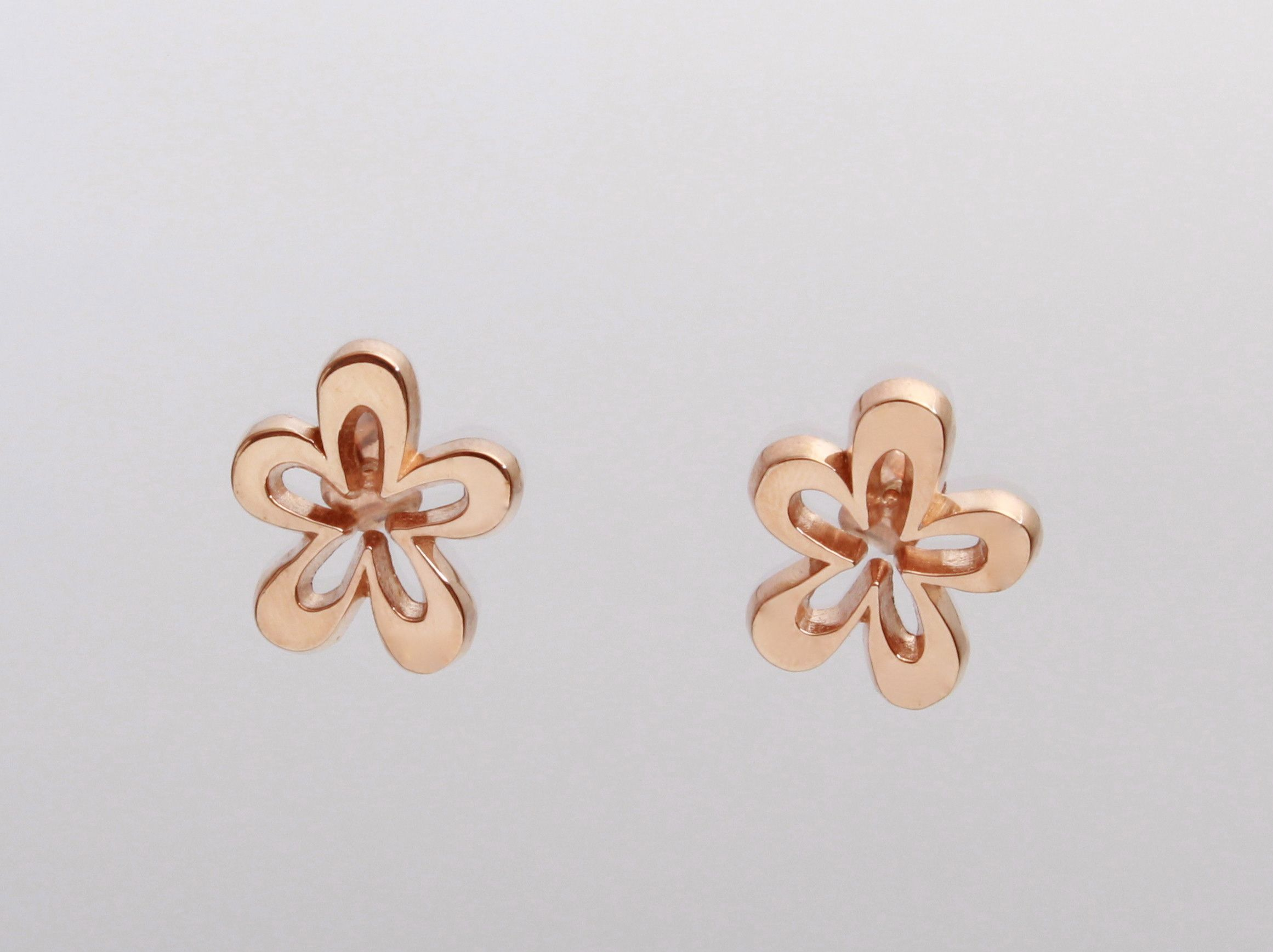 Pin On Flor De Macuilis