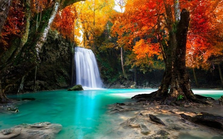 Colorful Trees Waterfall Nature Tropical Forest Fall Landscape Thailand Water Wallpapers Hd Desktop Forest Waterfall Beautiful Waterfalls Waterfall