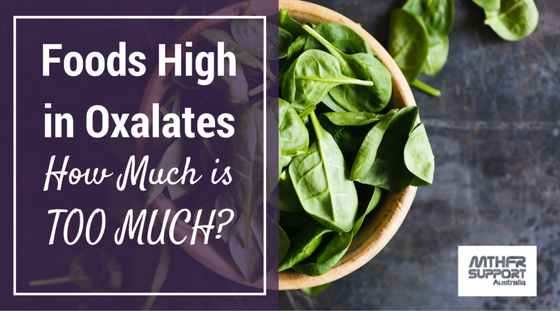 Foods High in Oxalates: How Much is TOO MUCH?   Chaga