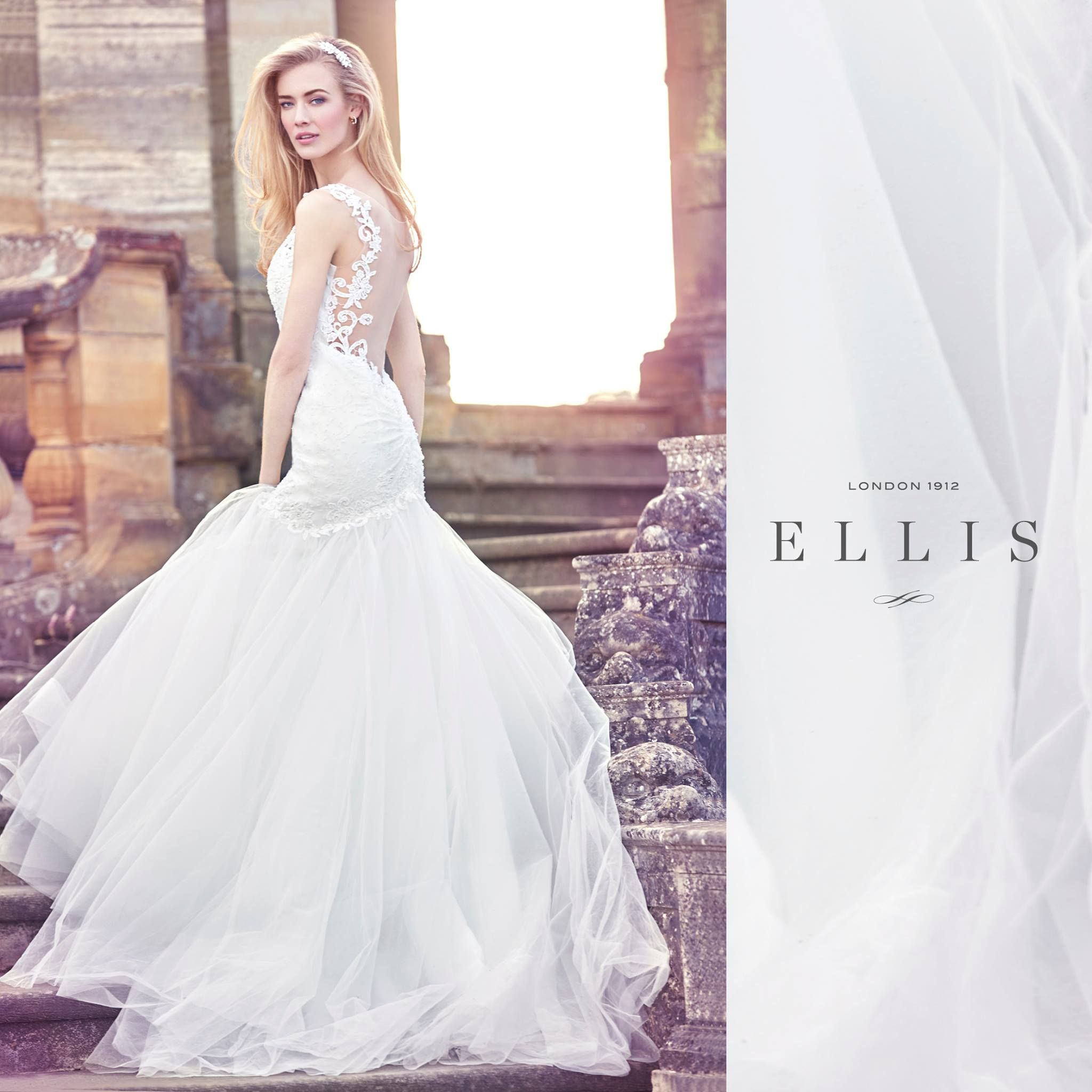 Ellis has been creating modern designs for an english rose type magnolia collection ellis bridals 2016 wedding dresses are delicately placed and lightly beaded on naturally silhouetted that give a more relaxed feel ombrellifo Choice Image
