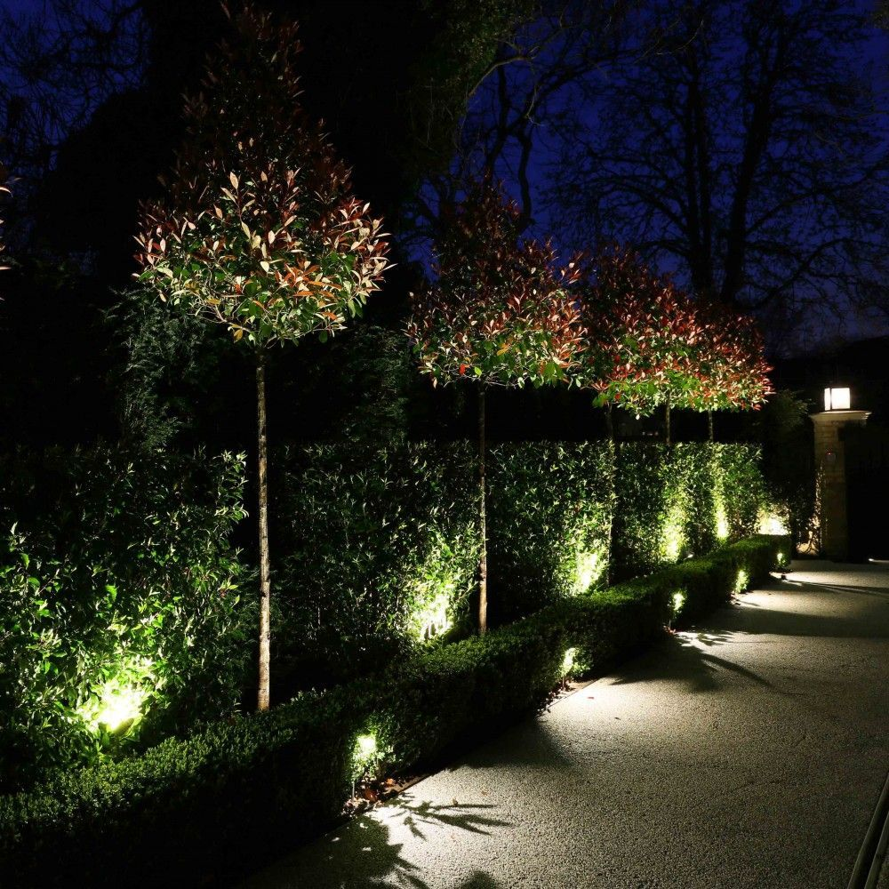 Spot Eclairage Exterieur Arbre hampton led floodlight | garden & pathways | john cullen