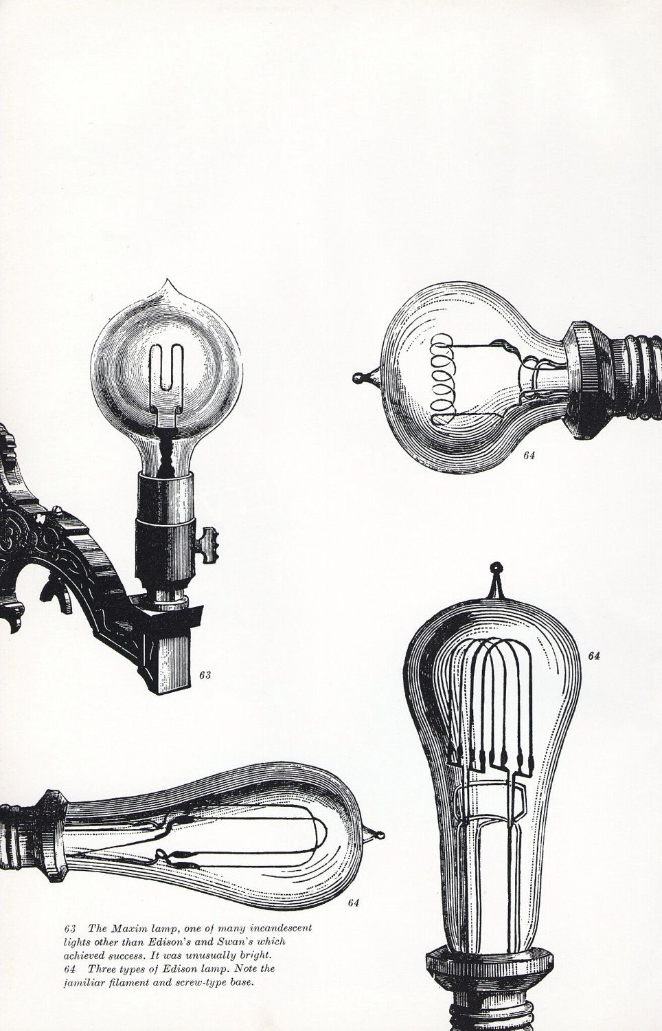 book plate of light bulbs