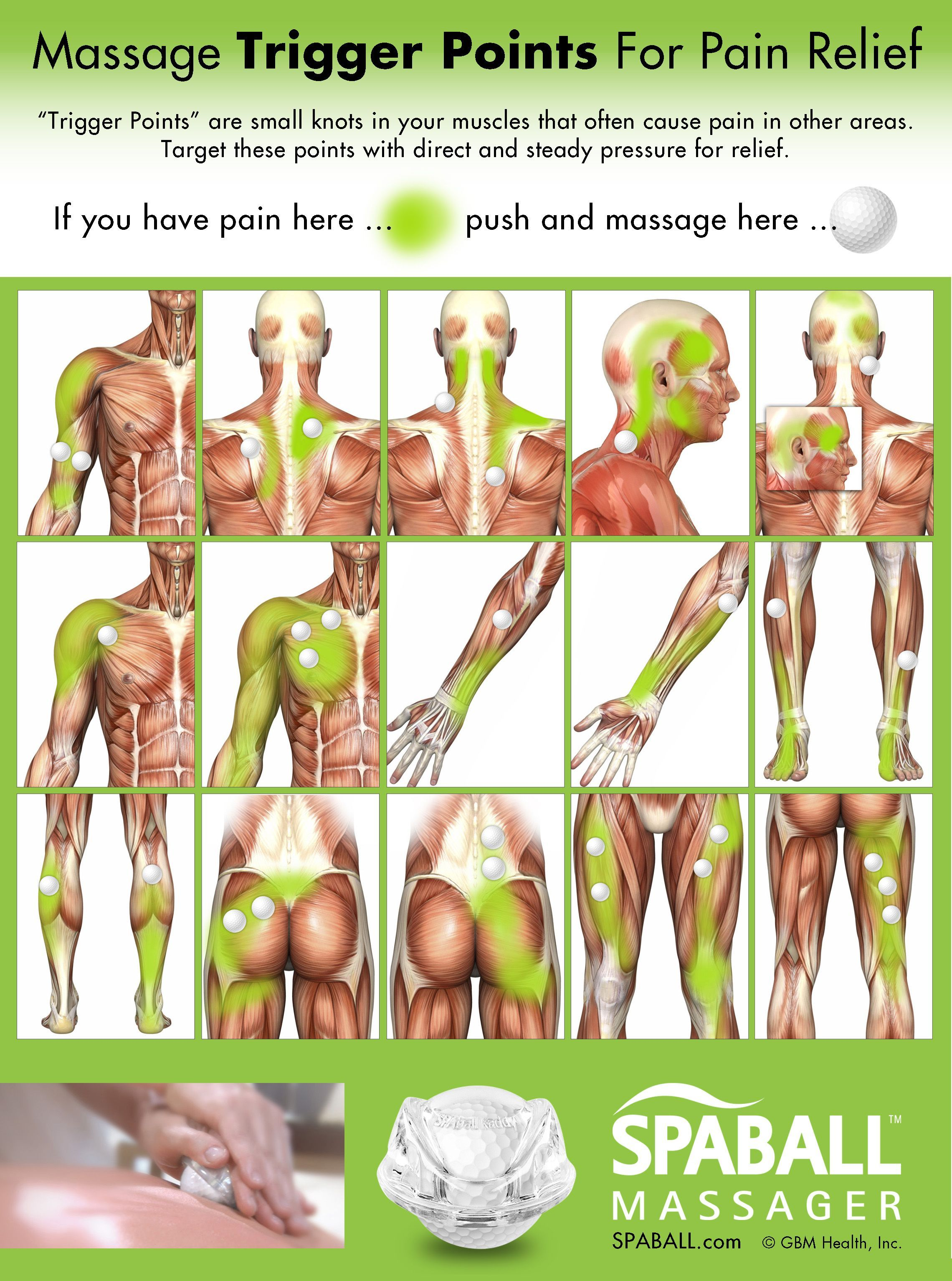 Massage Trigger Points For Pain Relief Massage Therapist School