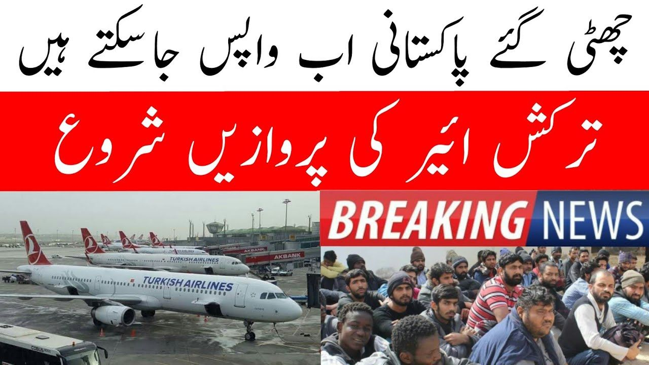 Turkish Airlines Flights Updates Turkey To Pakistan Flight Update Sialkot Tv Flight Update Turkish Airlines Airline Flights
