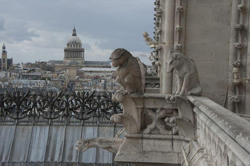 Les Chimères de Notre-Dame de Paris - Mairie de Paris - Picasa Albums Web