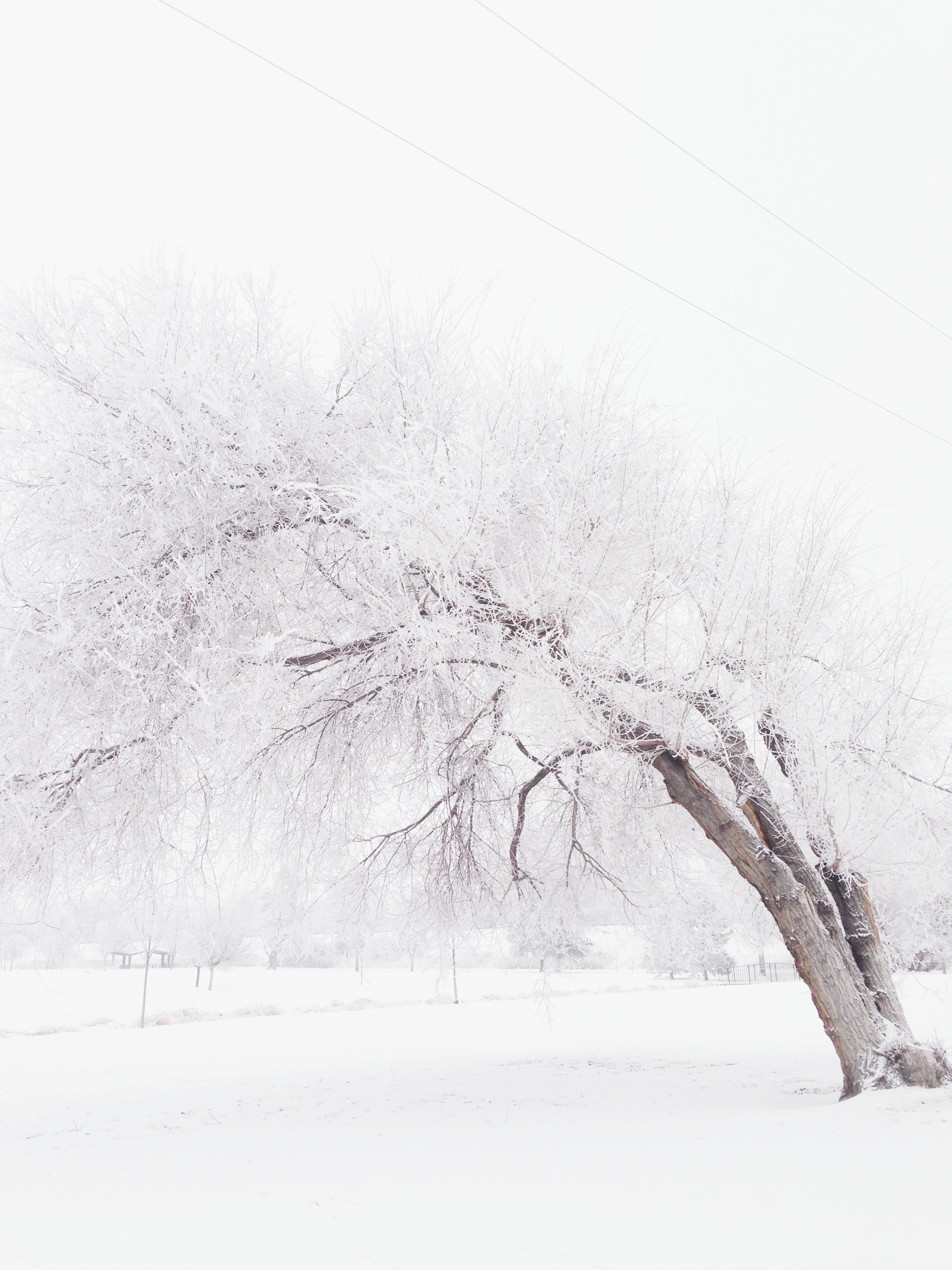 Winter Photography . | Winter Photography | Pinterest | Winter ...