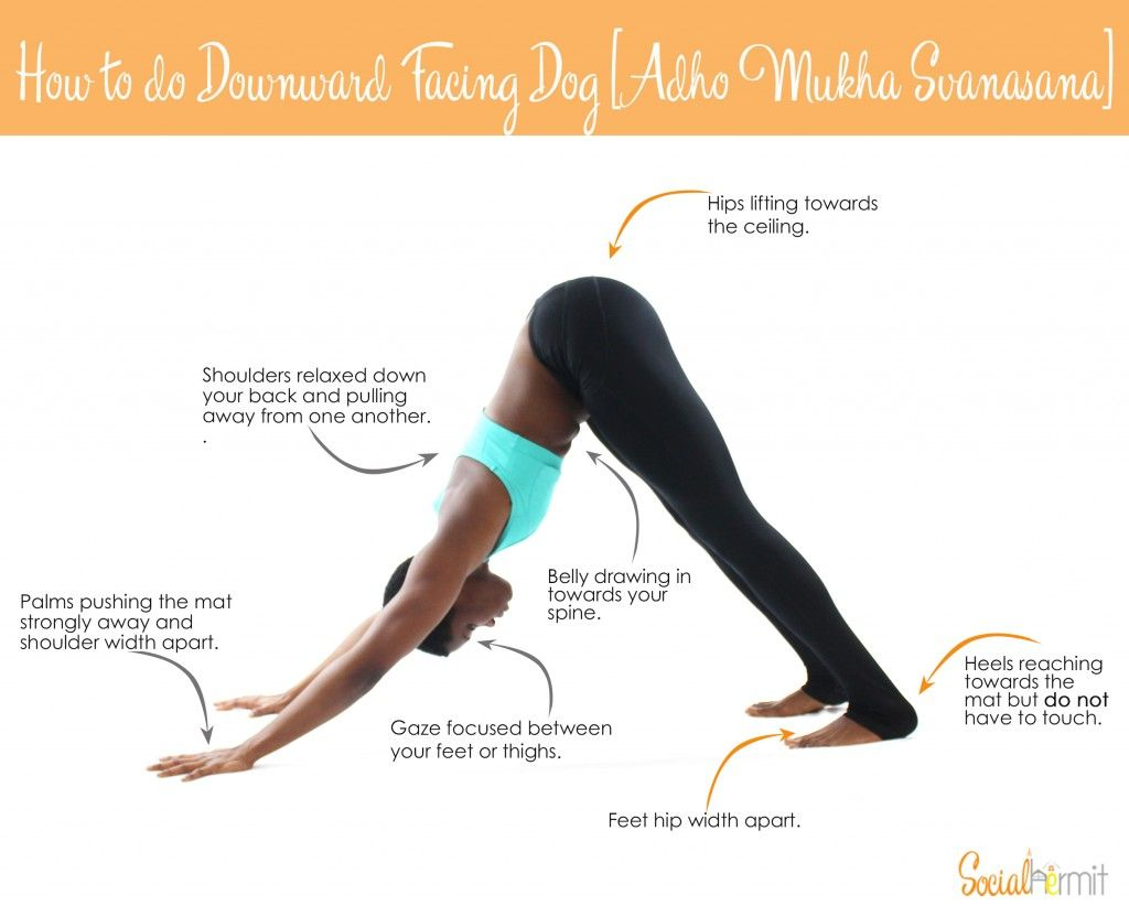 Downward Facing Dog How To