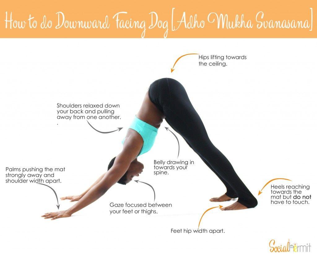 How to do Downward Facing Dog | Yoga poses, Yoga and Pose