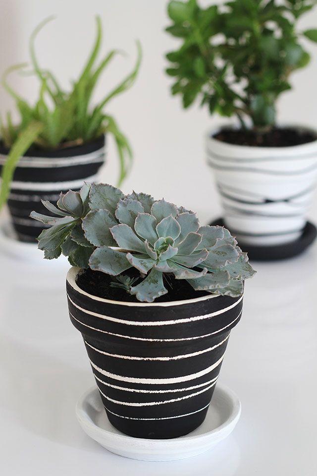 Black White Green Potted Plants Get Love In Monochrome Plant Pot Diy Plant Pot Design Painted Flower Pots
