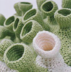 Snorkels Ju Pinterest Korallenriffe Korallen Und Häkeln
