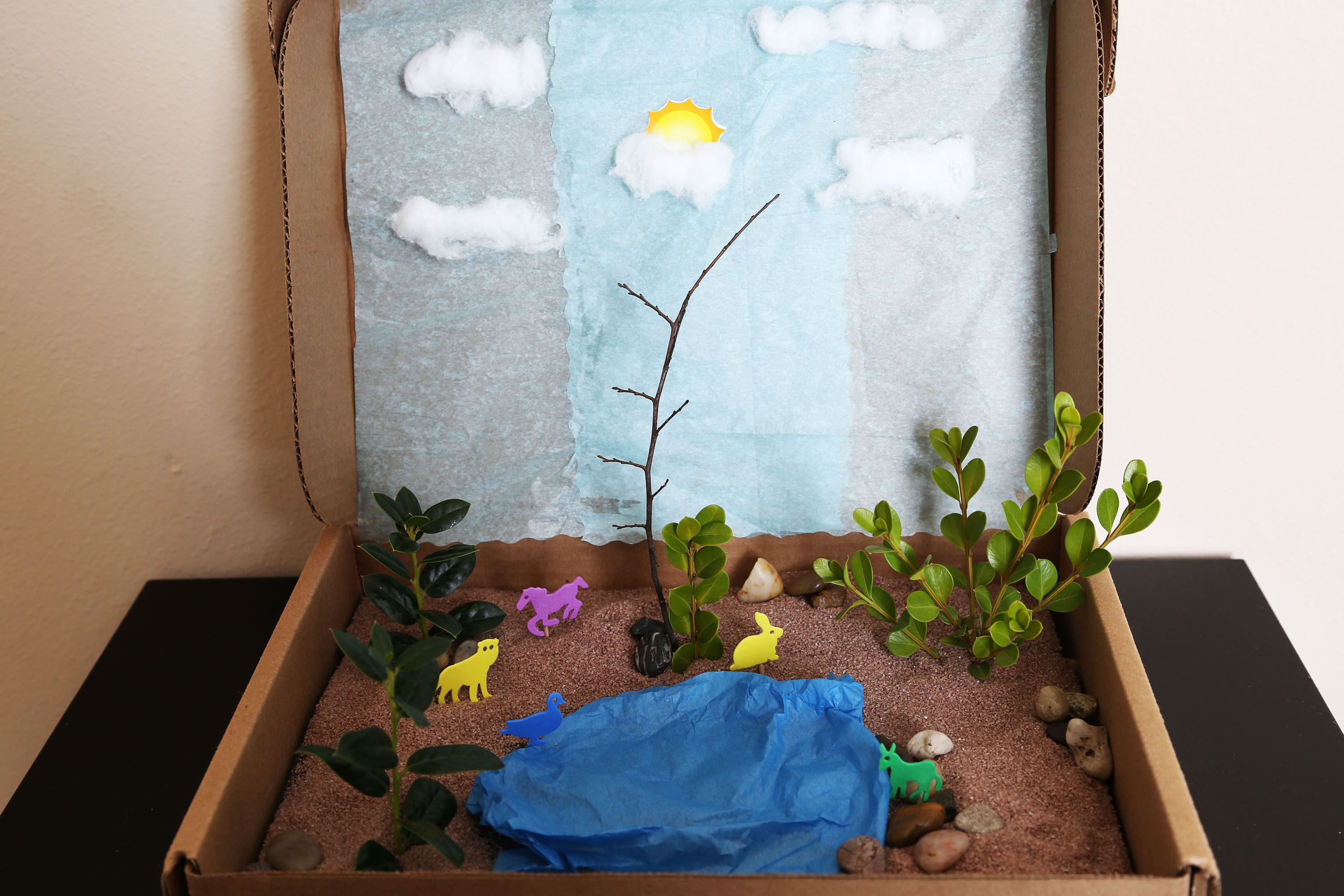 Make Your Own Diorama: How To Create A Habitat For A School Project