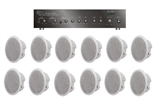 Large Restaurant/Bar/Retail Store Business Background Music Sound System- Amplifier 12 Speakers