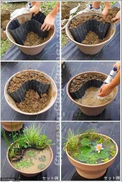 How to Set up Mini Water Gardens on Your Deck Petit jardin zen
