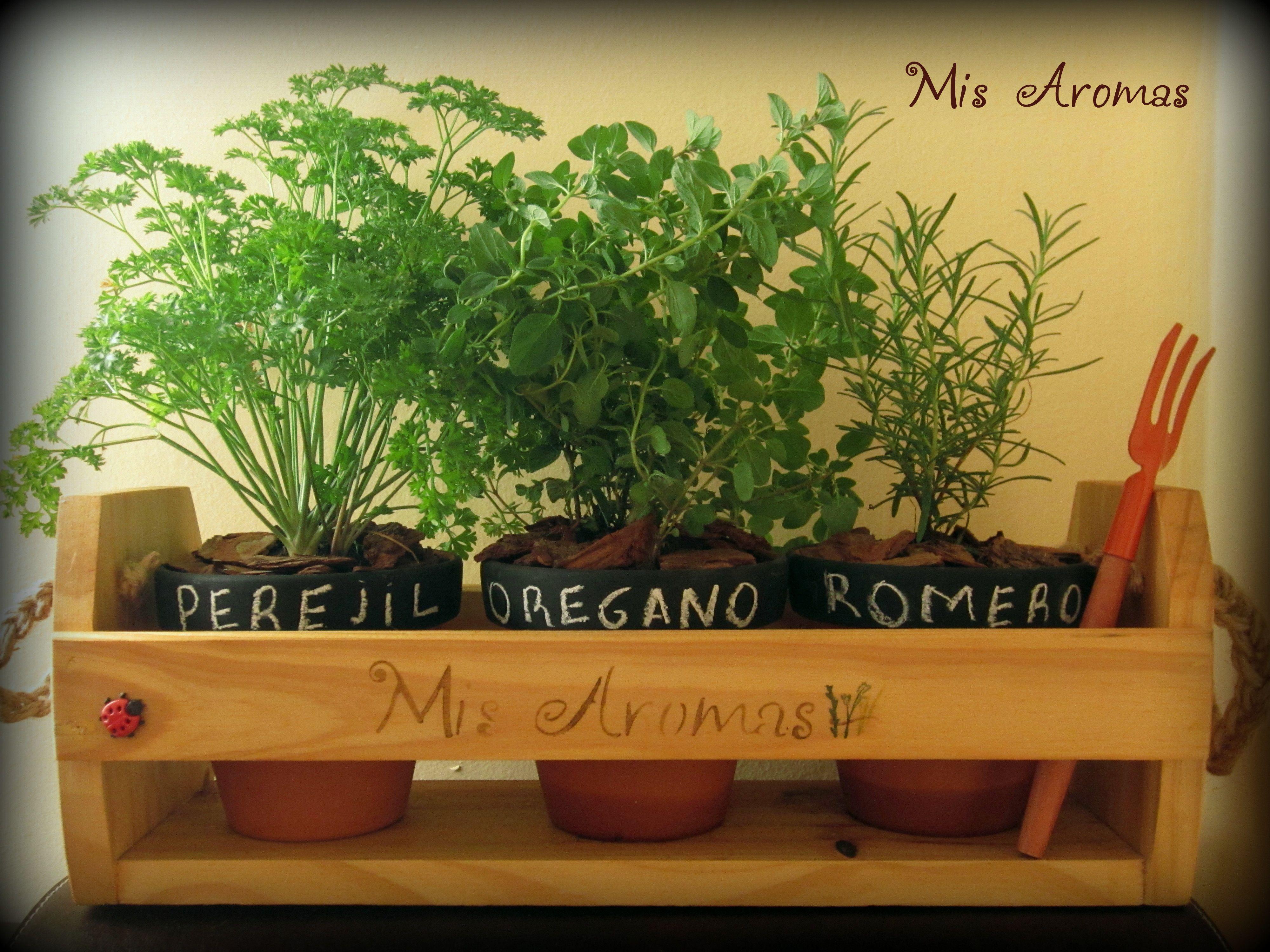 Kit de especies arom ticas incluye 1 porta macetero de for Huerta de aromaticas en macetas