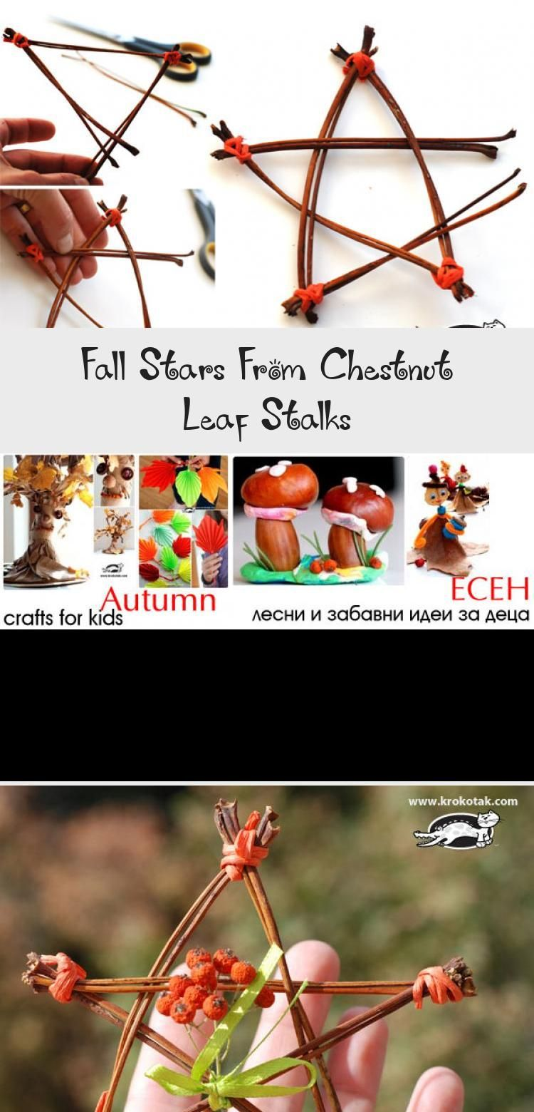 Fall Stars From Chestnut Leaf Stalks Crafts For Kids Crafts Fall Crafts
