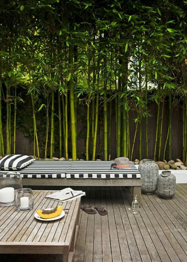 Une Terrasse Bordee De Bambous Jardin Couvert Terrasse Jardin