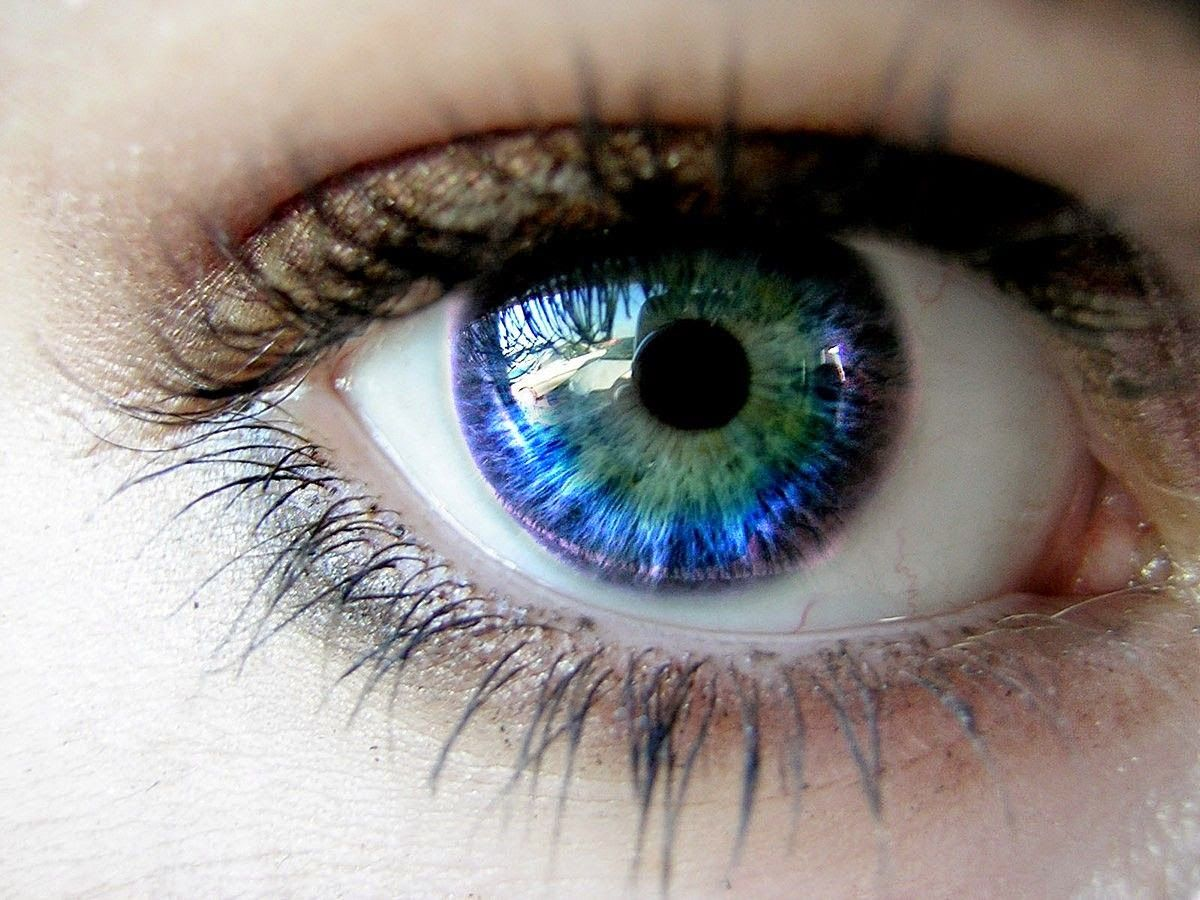 Online eye color changer - Did You Know That It S Not The Pigment That Makes Our Eyes Blue Or Green