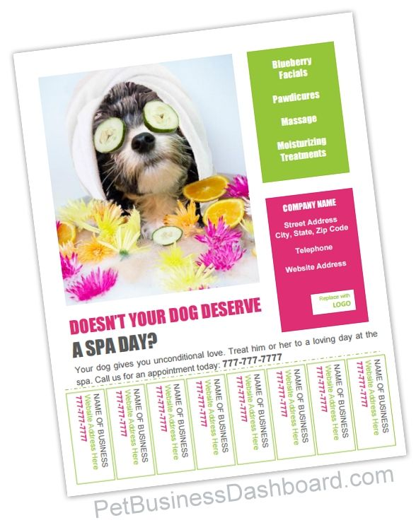 Bulletin Board Flyer W Tear Tabs Template Pet Business Dashboard