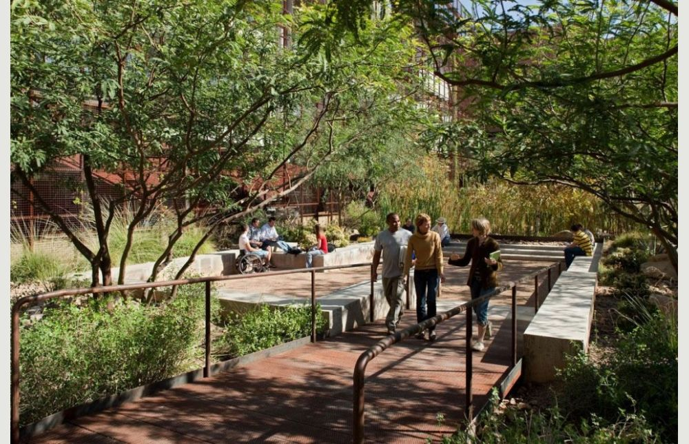 Underwood Family Sonoran Landscape Laboratory | In Tucson · University Of  ArizonaLandscape ...