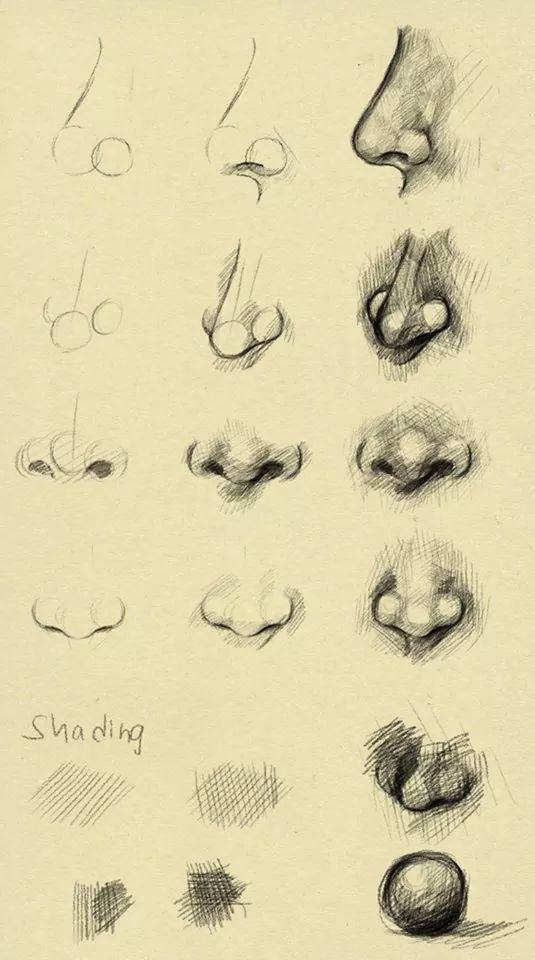 Nose reference by ryky apr 2014 in resources stock images tutorials other shading technique nose