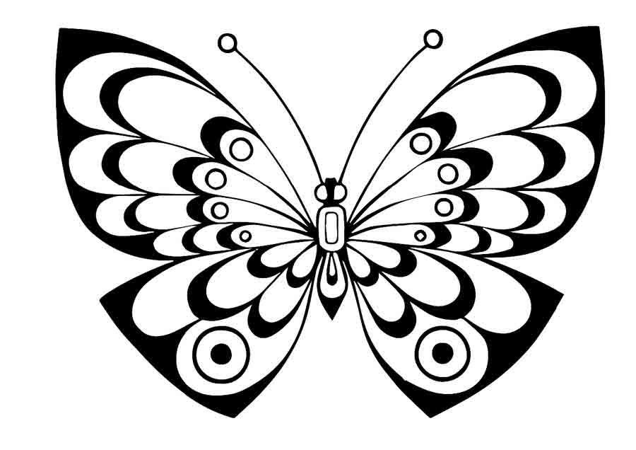 Hier finden Sie Schmetterlinge Ausmalbilder zum Ausdrucken ...
