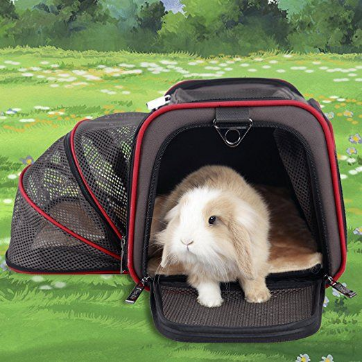 """Petsfit 16""""x10""""x9"""" Expandable Foldable Washable Travel Carrier, Airline Approved Pet Carrier Soft-sided"""