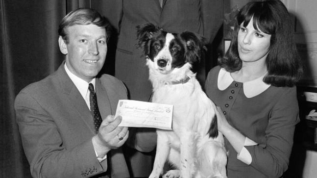 How Pickles The Dog Found Stolen World Cup Trophy And Made His Owner Rich World Cup Trophy World Cup World Cup Winners