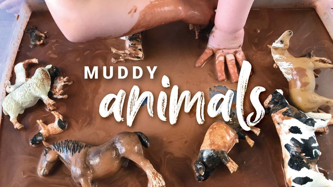 Muddy Animals Activity In 2020 Create An Animal Animal Activities Sensory Activities