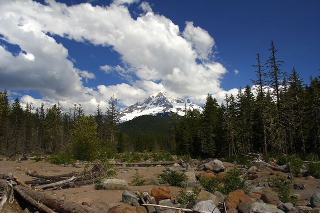 Mt. Hood from Ramona Falls Trail, Oregon by Toadly fly, via Flickr