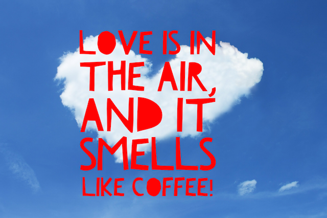 25 Coffee Quotes: Funny Coffee Quotes That Will Brighten Your Mood | Coffee humor, Coffee quotes ...