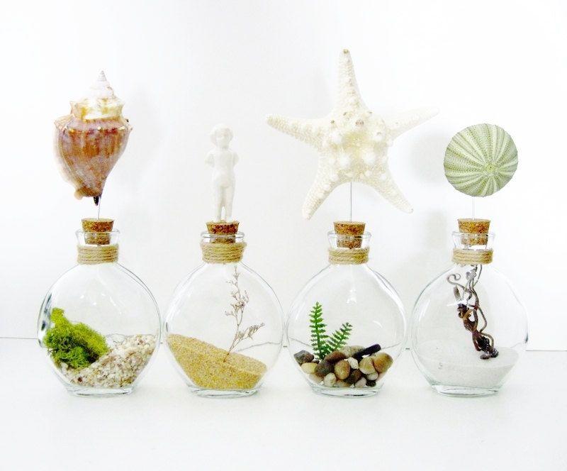 Terrariums per potets fe vidre