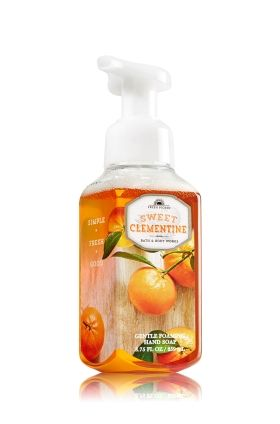 Cranberry Tangerine Gentle Foaming Hand Soap Anti Bacterial