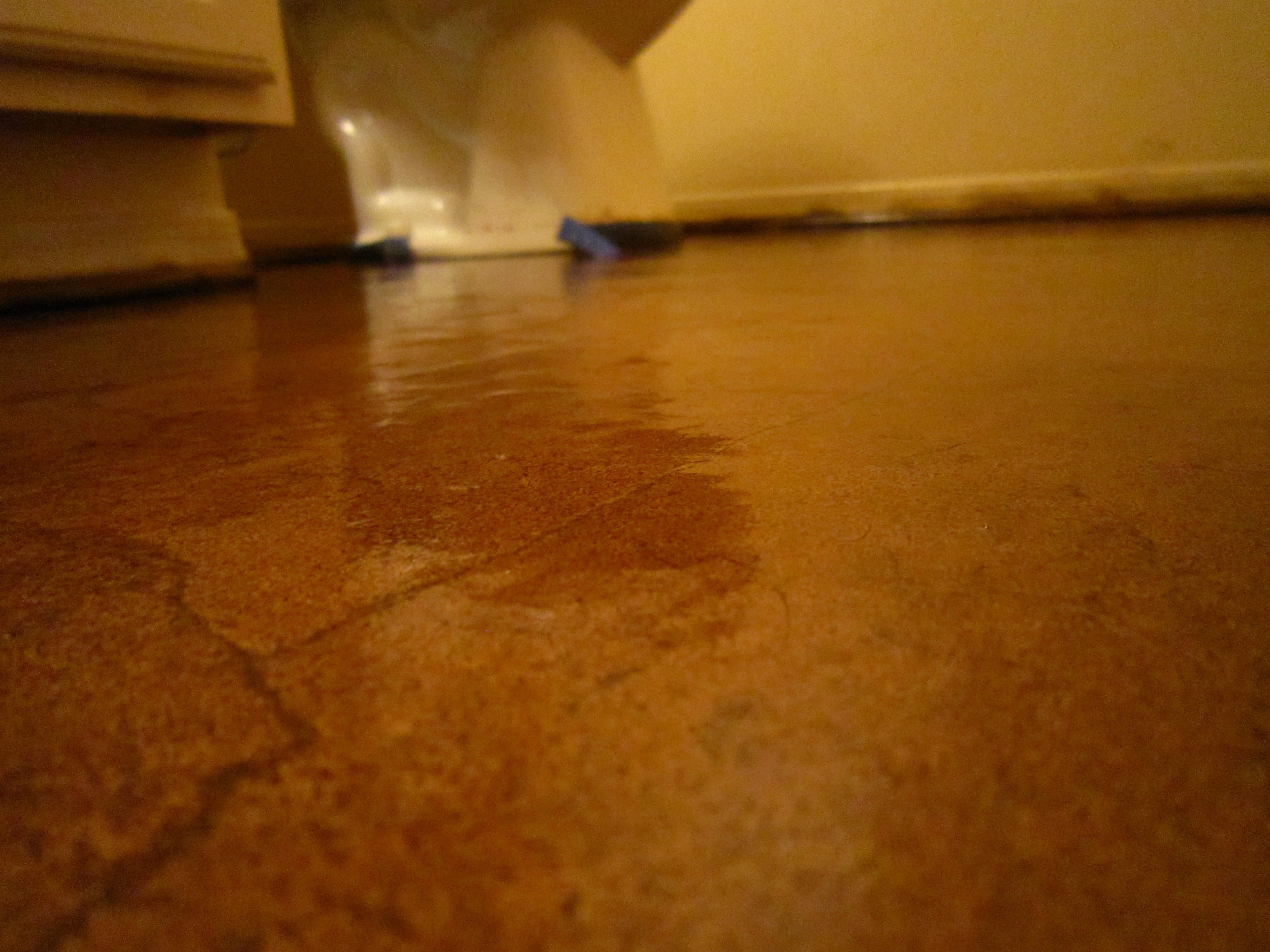 Diy Stained Brown Paper Floor Awesomeness Under 30 Do It Yourself Hardwood Laminate Floor Alternative Diy Flooring Diy Staining Paper Flooring