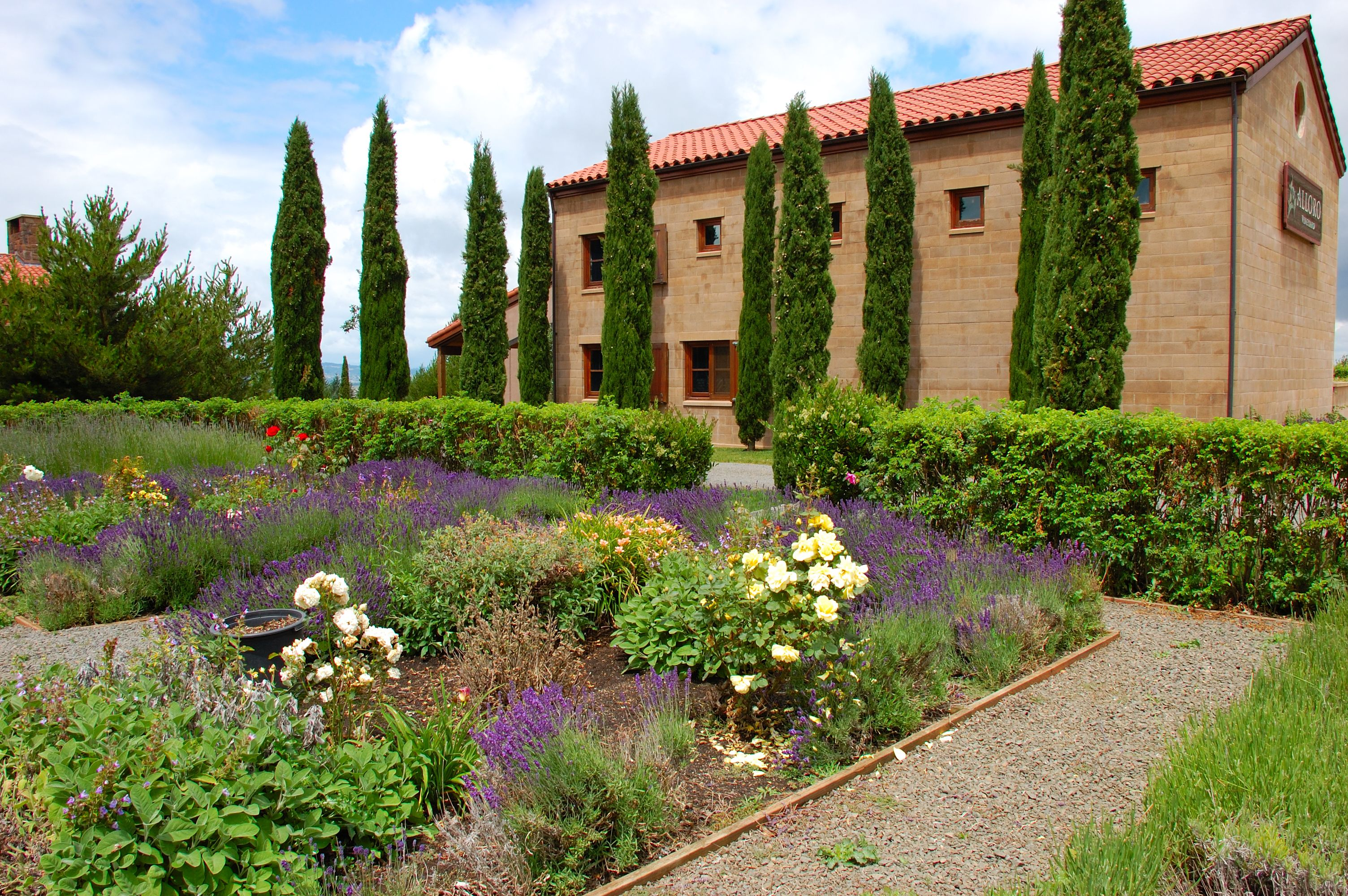 Alloro Vineyards, in Sherwood, Oregon, is one of several