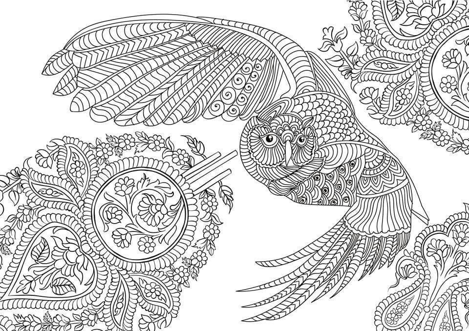 Coloring Sheets Adult Colouring Pages Art Therapy Zentangles Bullet Journal Stress Owls