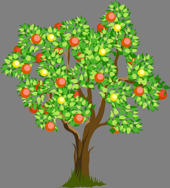 Картинка дерево с яблоками