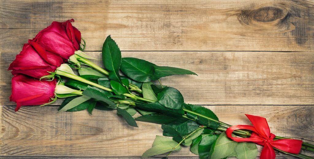 تفسير رؤية الورد الأحمر في المنام لابن سيرين موسوعة طيوف Plants