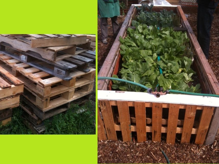 Raised gardening beds made from reclaimed wooden pallets ...