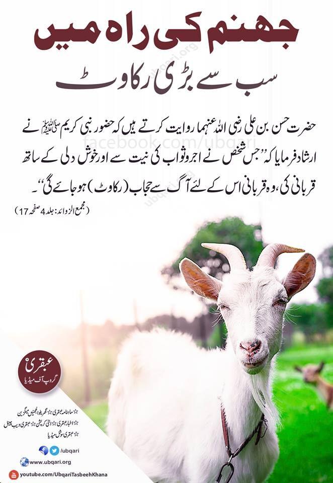 dua quotes facebook in urdu Google Search Quotes, Are