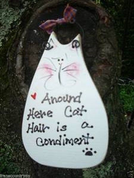 AROUND HERE CAT HAIR IS A CONDIMENT COUNTRY WOOD RUSTIC PRIMITIVE SIGN PLAQUE