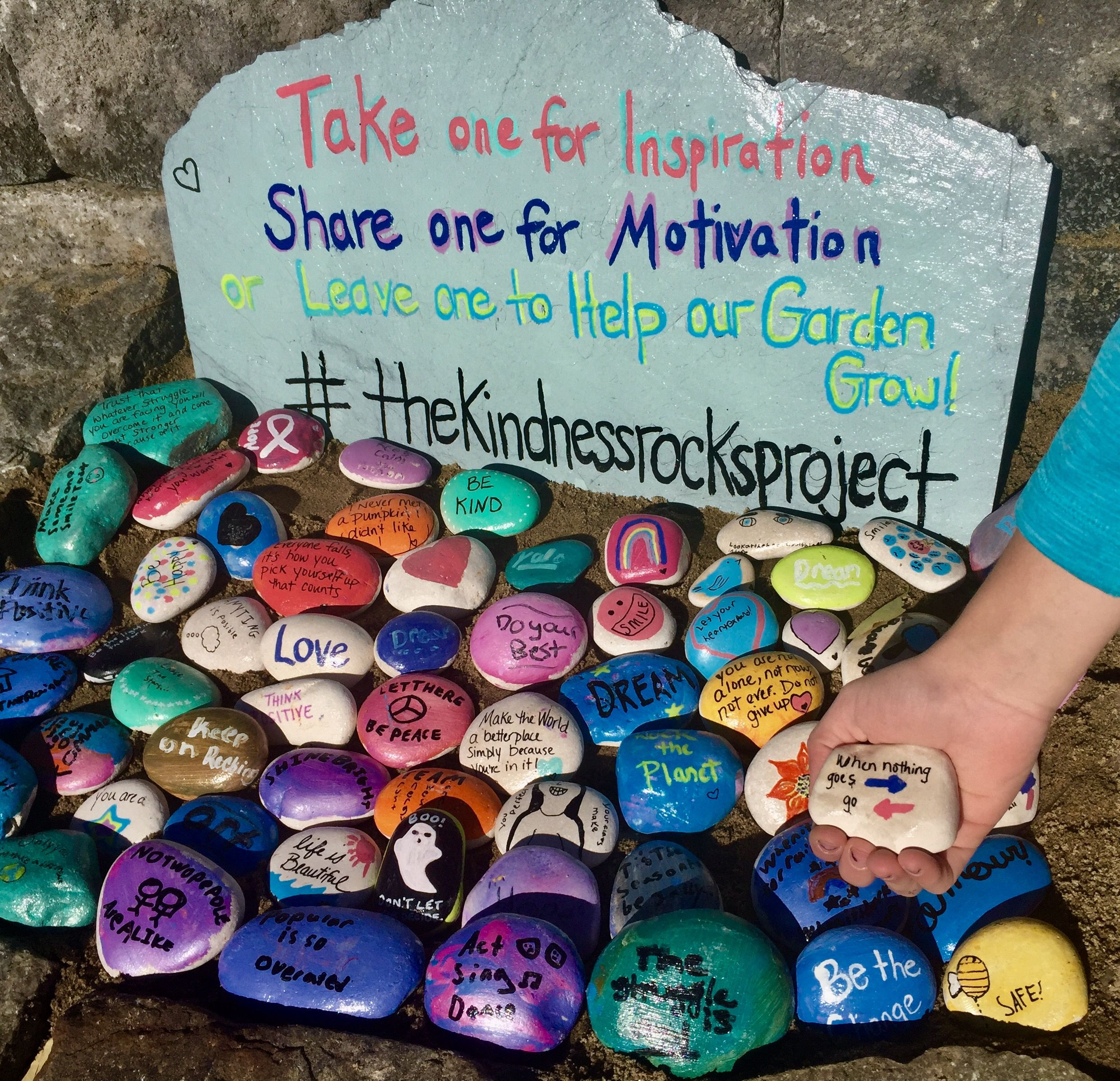 Image result for the kindness rocks project